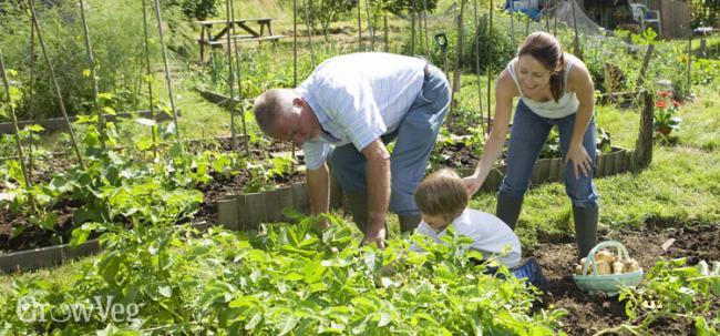 family-gardening-2x.jpg